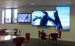 Sussex Academies Video Wall